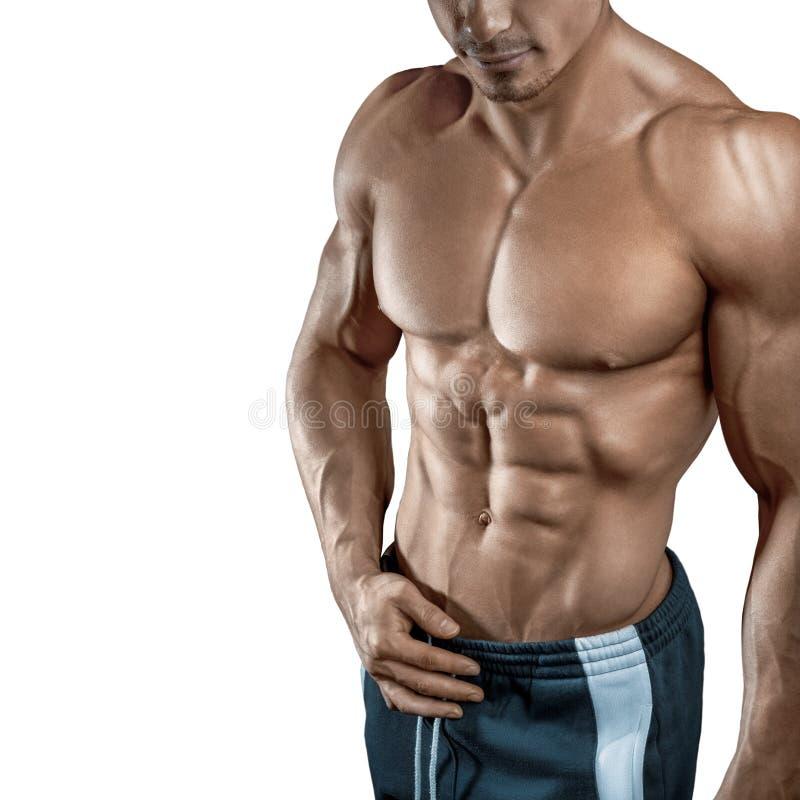 Hübscher muskulöser Bodybuilder lokalisiert auf weißem Hintergrund lizenzfreie stockbilder