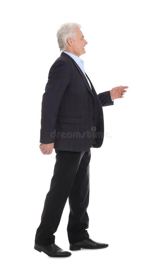 Hübscher reifer Mann in der stilvollen Klage lizenzfreie stockfotos