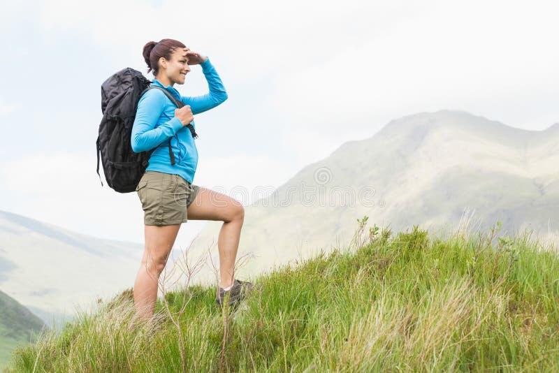 Hübscher Wanderer mit Rucksack aufwärts gehend lizenzfreies stockbild
