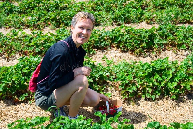 Hübsches Frauensammeln strawberr lizenzfreie stockfotografie