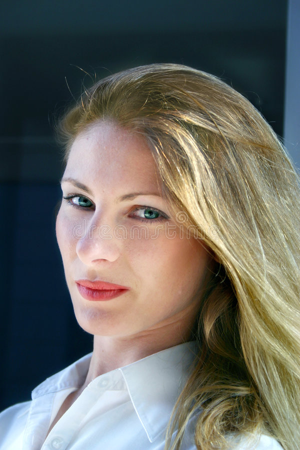 Hübsches Geschäftsfrau-Portrait lizenzfreies stockbild