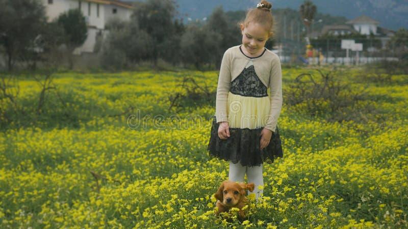 Hübsches Mädchen, das auf dem gelben Blumengebiet mit einem Welpen spielt stockfoto