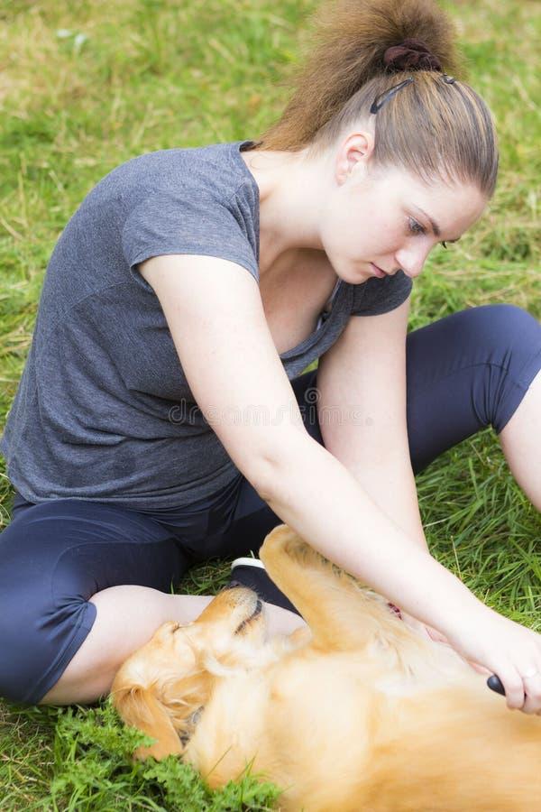 Hübsches Mädchen, das den Hund im Freien kämmt stockbilder