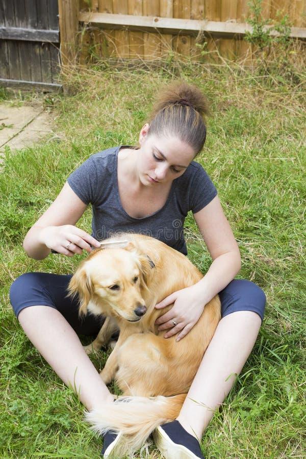 Hübsches Mädchen, das den Pelz des Hundes im Freien kämmt lizenzfreies stockbild