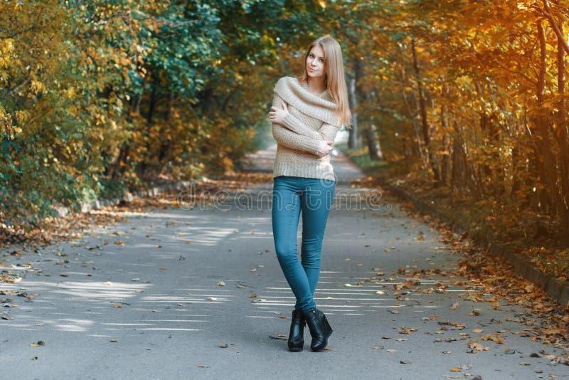 Hübsches Mädchen in einem Pullover, der im Herbstpark steht stockfotos