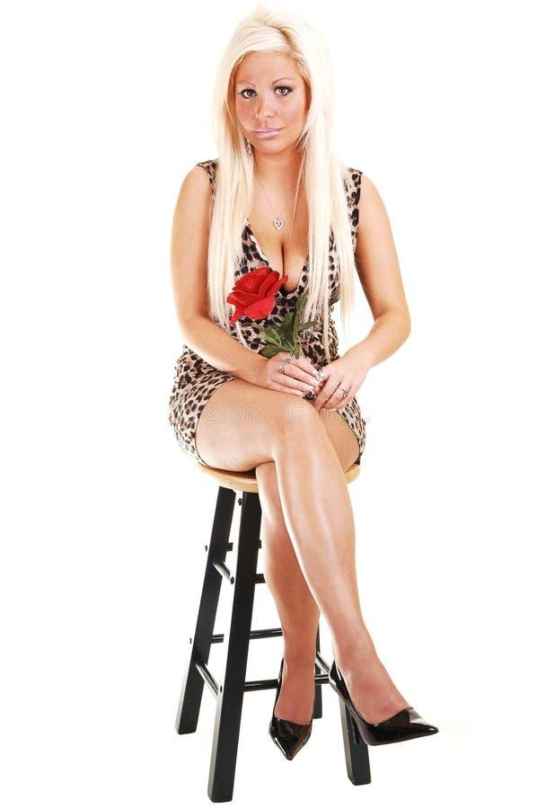 Hübsches Mädchen im braunen Kleid. lizenzfreie stockbilder