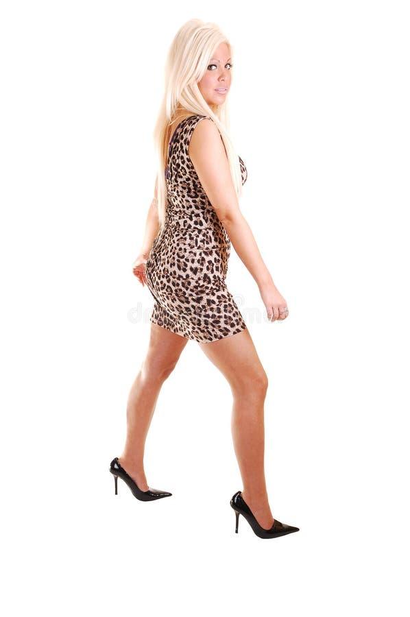 Hübsches Mädchen im kurzen Kleid. lizenzfreie stockfotografie