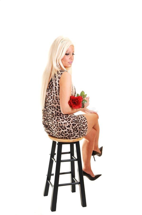 Hübsches Mädchen im Leopardenkleidsitzen. stockfotos