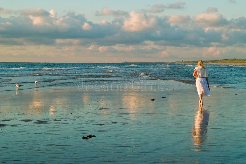 Hübsches Mädchen und die Seemöwen lizenzfreie stockfotografie