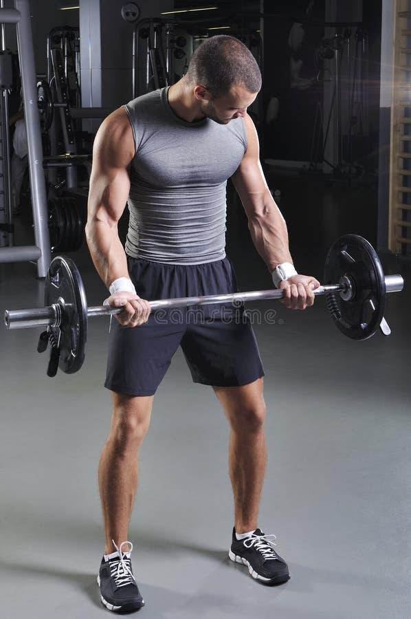 Hübsches muskulöses männliches vorbildliches Doing Biceps Exercise lizenzfreie stockbilder