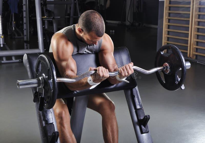 Hübsches muskulöses männliches vorbildliches With Perfect Body, das Bizeps-Übung tut lizenzfreie stockfotografie