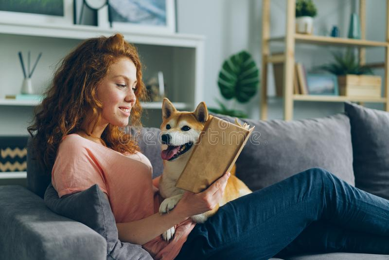Hübsches Studentenlesebuch in der Wohnung, die entzückenden Hund lächelt und streichelt lizenzfreie stockbilder