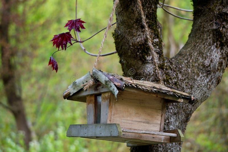 Hübsches Vogelhaus lizenzfreie stockfotos