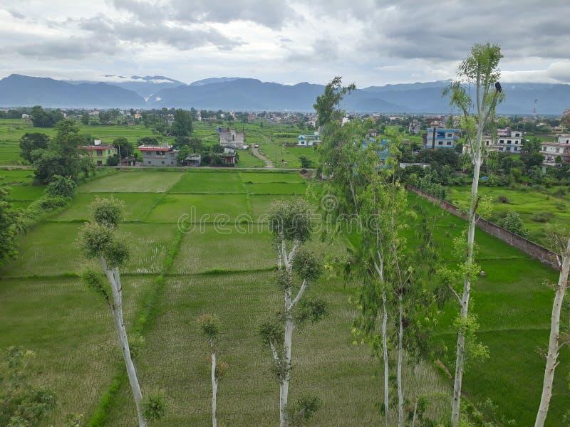 Hügel gestaltet Haus landschaftlich lizenzfreie stockfotografie