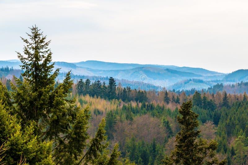Hügel mit Waldszenischer panoramischer Landschaft stockbilder