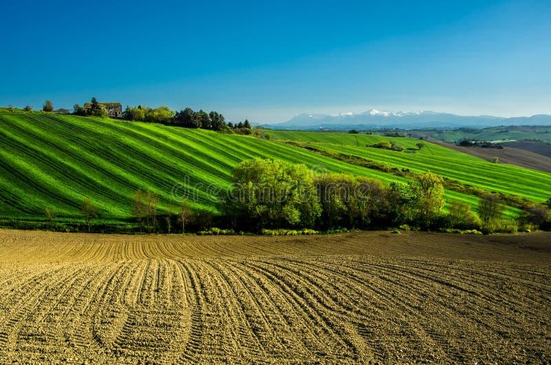 Hügel und Felder lizenzfreies stockfoto