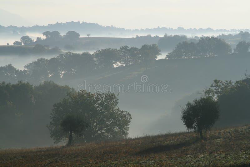 Hügel und Nebel stockbilder