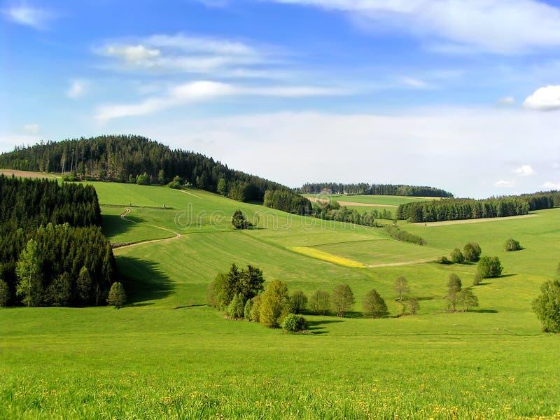 Hügel von Muehlviertel lizenzfreie stockfotos