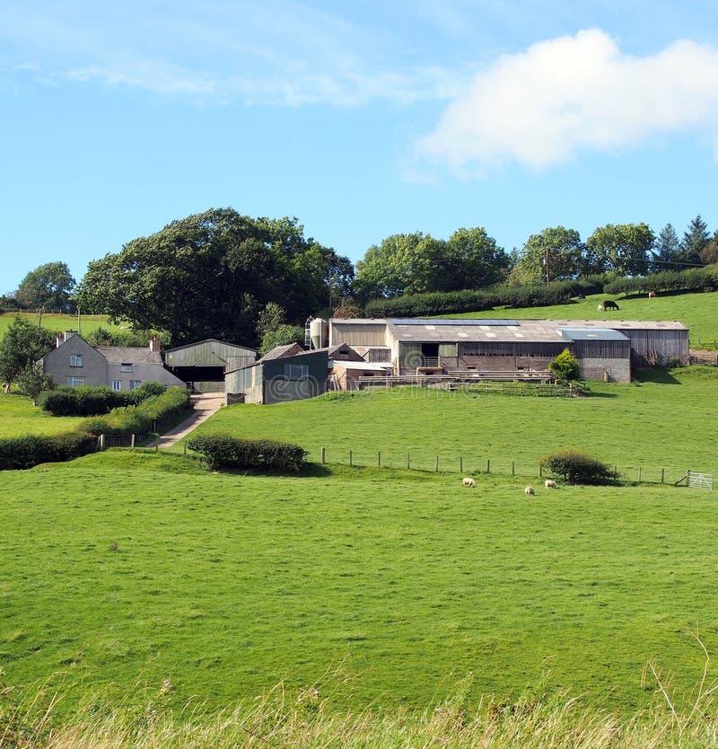 Hügelbauernhof, mit Haus lizenzfreie stockfotografie