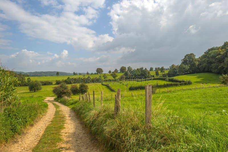 Hügelige landwirtschaftliche Landschaft lizenzfreies stockbild