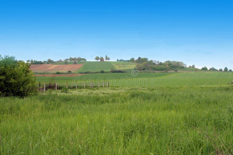 Hügellandschaft lizenzfreie stockbilder