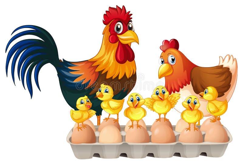 Hühner und Eier im Kartonkasten stock abbildung