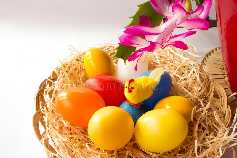 Hühnerbunte Eier und Osterkaktus stockfoto