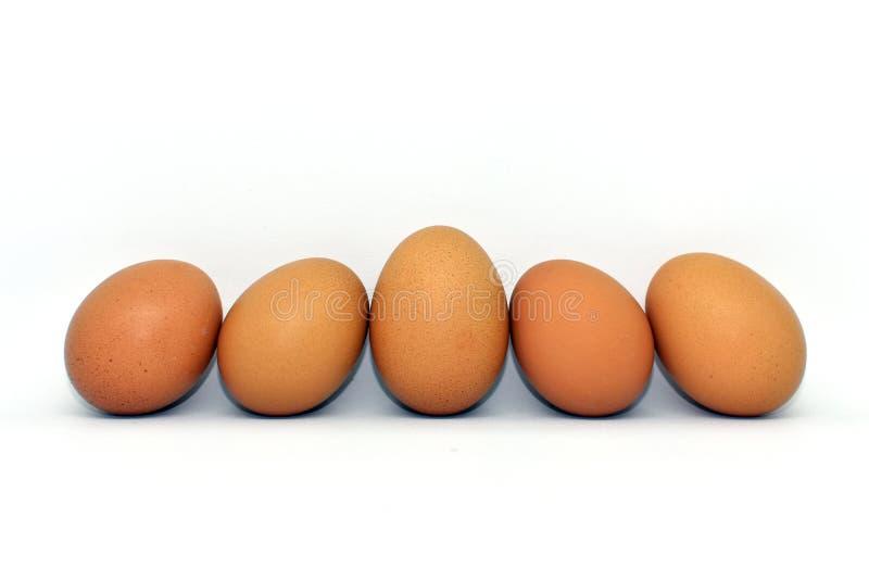 Hühnerei lokalisiert auf weißem Hintergrund lizenzfreie stockfotos