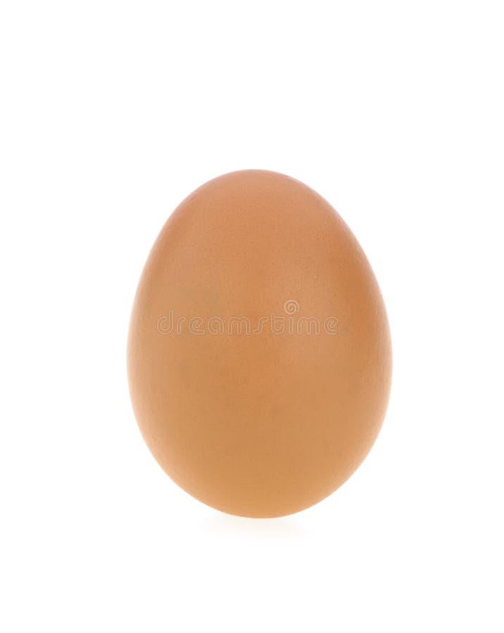 Hühnerei mit weißem Hintergrund stockbild