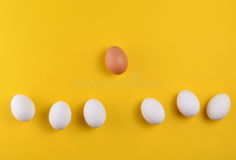 Hühnereien auf einem gelben Pastellhintergrund, Konzept von Einzigartigkeit, Minimalismus, kreativer Ostern-Hintergrund lizenzfreie stockfotografie
