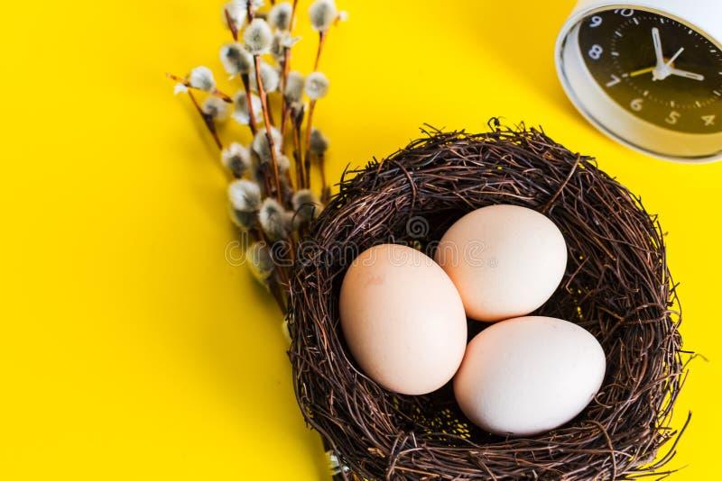 Hühnereien in einem Nest mit einem Weidenzweig und einem Wecker auf einem gelben Hintergrund lizenzfreies stockfoto