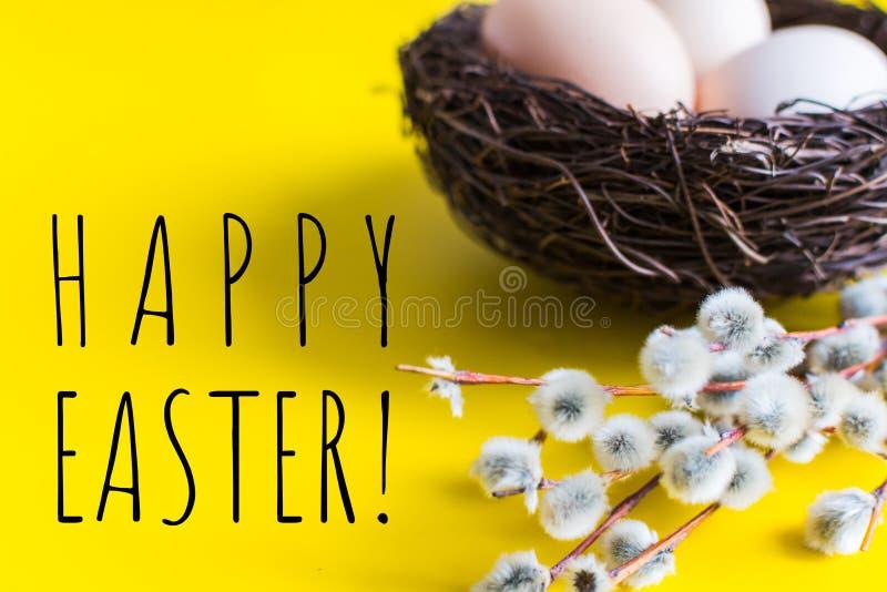 Hühnereien in einem Nest mit einem Zweig der Weide Glückliches Ostern-Konzept lizenzfreie stockfotos