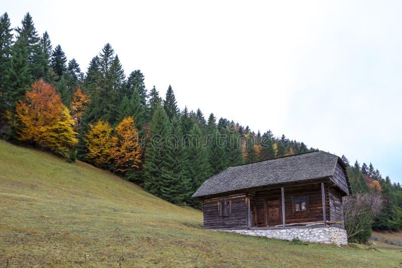 Download Hütte stockbild. Bild von halle, fliesen, feldbett, wohnung - 27730045