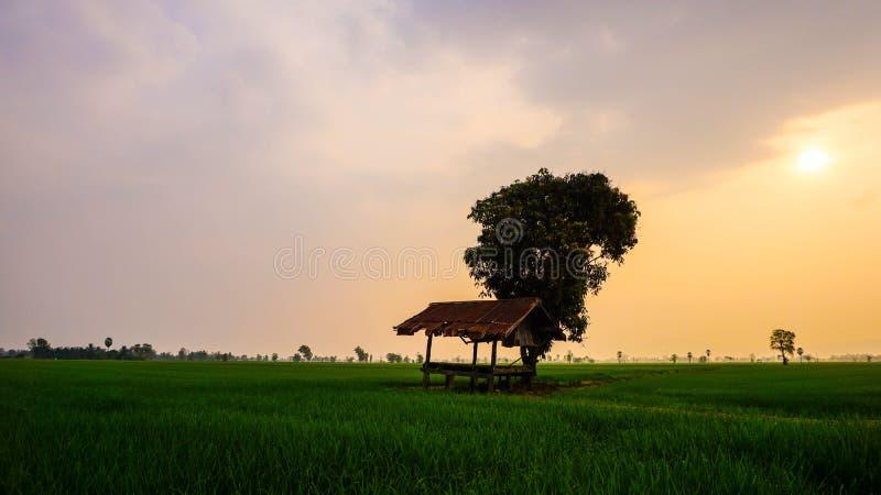 Hütte auf dem Gebiet lizenzfreie stockbilder