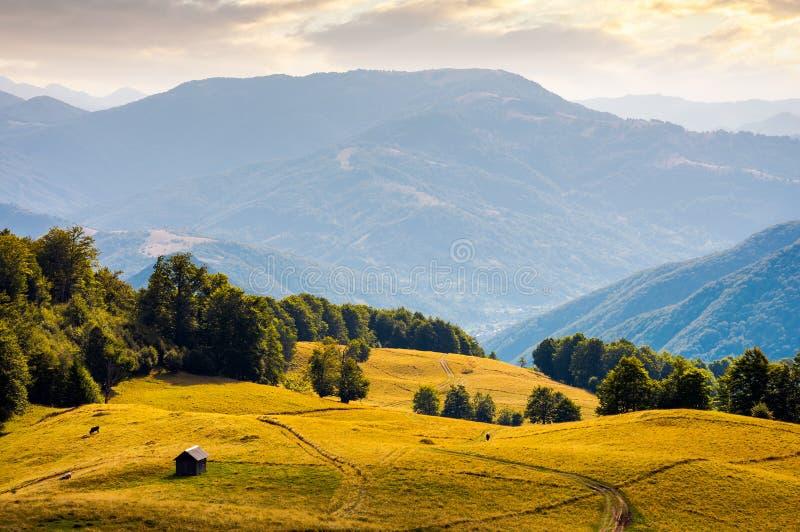 Hütte auf dem grasartigen Hügel bei Sonnenuntergang lizenzfreies stockbild