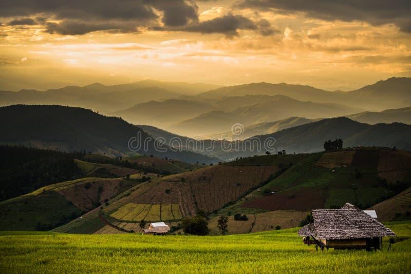 Hütte auf Hügel vor Sonnenuntergang stockbilder