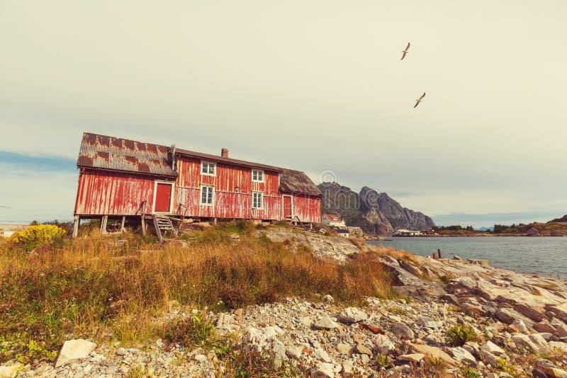 Hütte im Norwegen lizenzfreie stockfotos