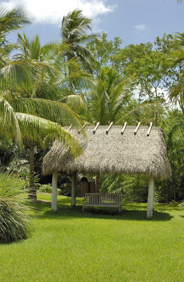 Hütte und Palmen stockbilder