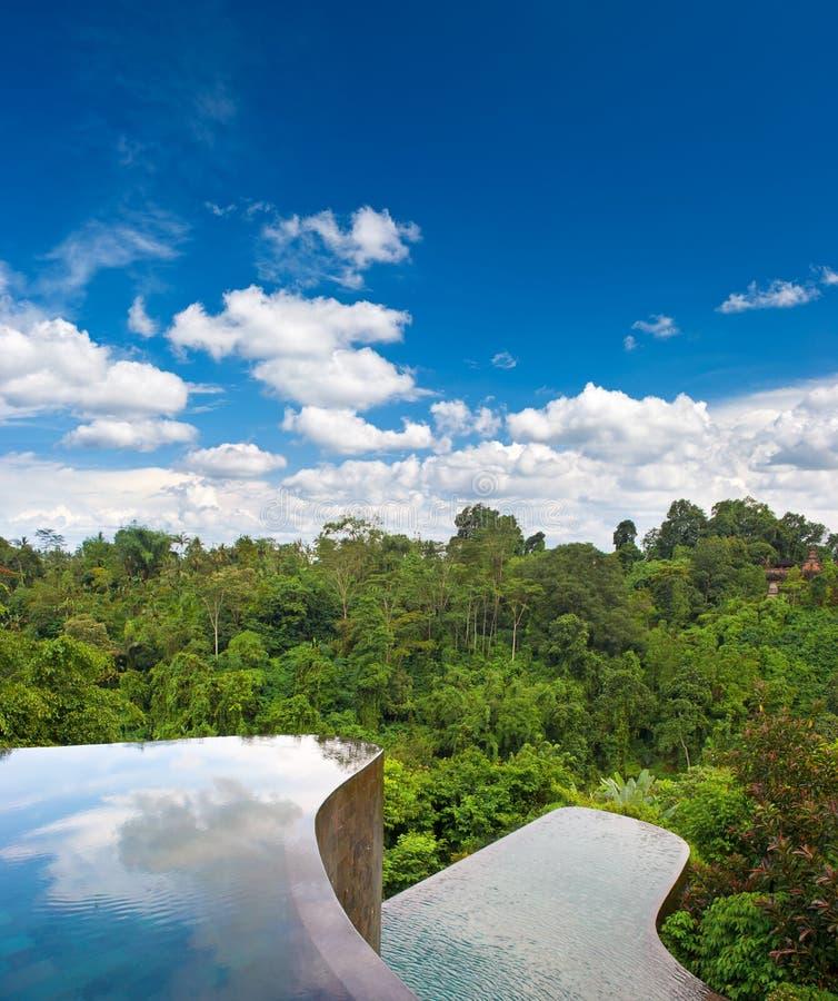 härligt tropiskt skogpölregn arkivbilder