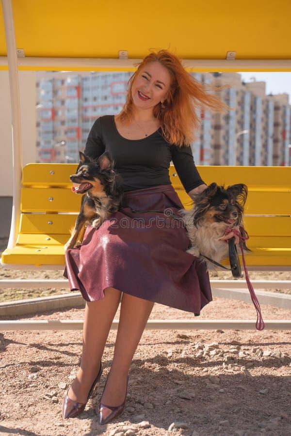 H?bsche gl?ckliche redheaded Frau mit zwei wenigen Hunden auf der gelben Sommerbank lizenzfreie stockbilder