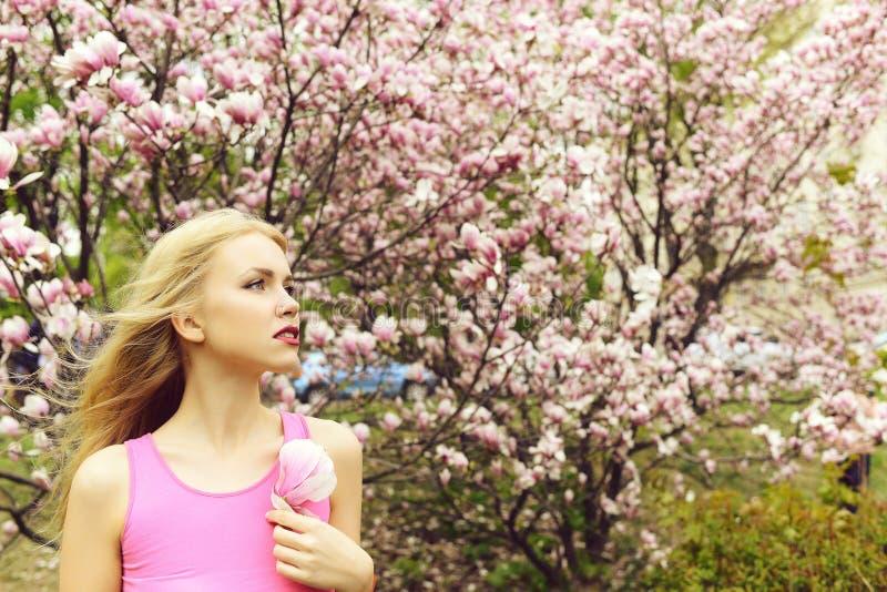 H?bsche M?dchengriff-Magnolienblume an bl?hendem Baum, Fr?hlingsgarten stockfotos