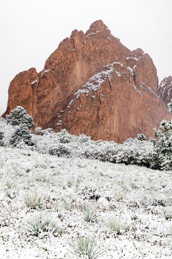 H?ftig sn?storm p? tr?dg?rden av gudColorado Springs de steniga bergen under vintern som t?ckas i sn? royaltyfri bild