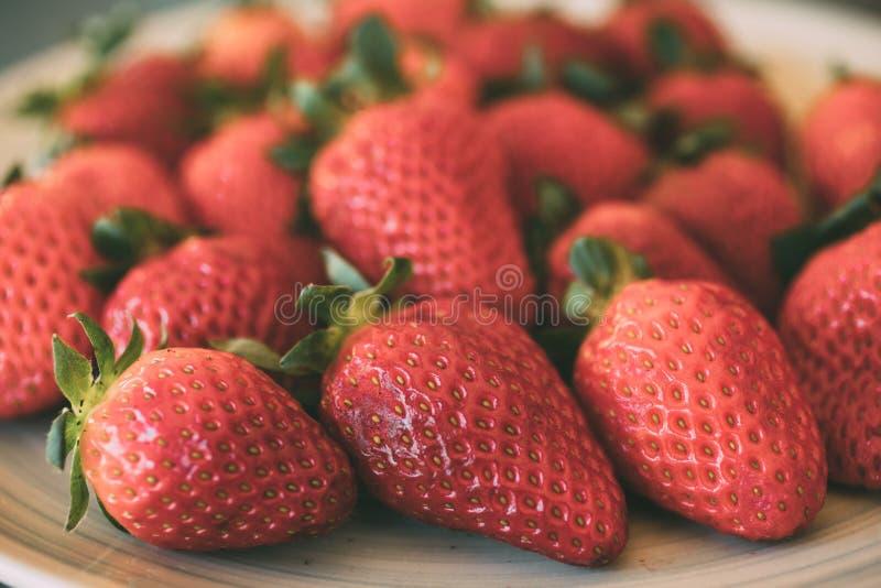 H?g av nya och organiska jordgubbar som bakgrund N?ra ?vre sikt av mogna jordgubbar arkivbilder