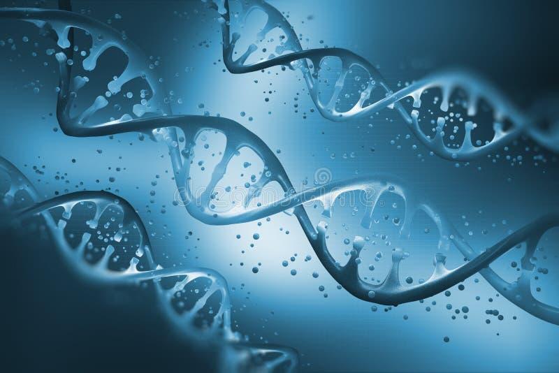 H?lice do ADN Conceito gen?tico do ADN isolado no fundo branco Estudo da estrutura do ADN ilustração royalty free