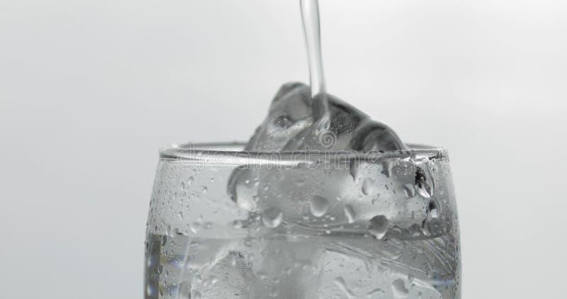 H?lla upp skott av vodka in i exponeringsglas med is Svart bakgrund arkivfoto