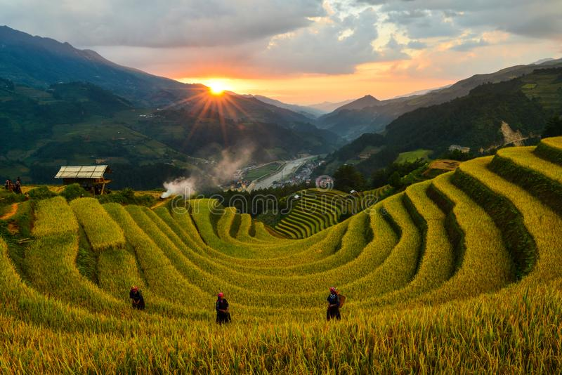 Sang Nhu horse-shoe and Terraced rice field of the H`Mong ethnic people royalty free stock images