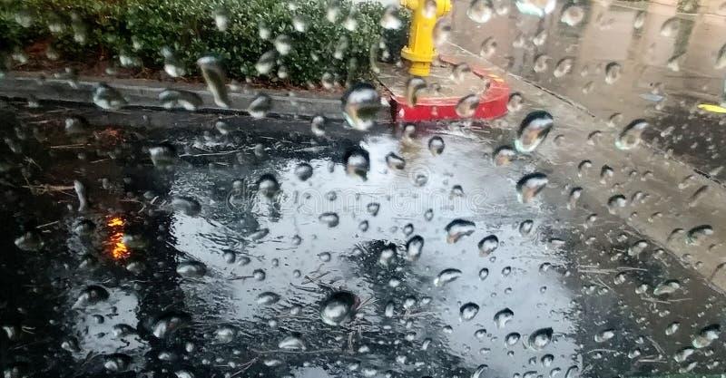 h2o raindrops okno pisa? fotografia royalty free