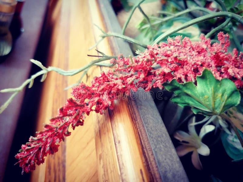 H?rlig blomma royaltyfri foto