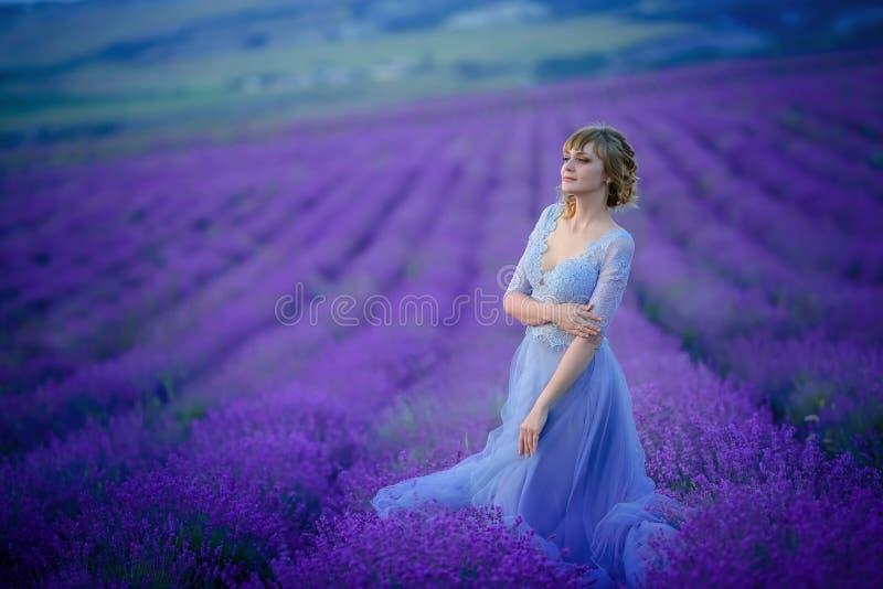 H?rlig brud i br?llopdag i lavendelf?lt Nygift personkvinna i lavendelblommor royaltyfria foton