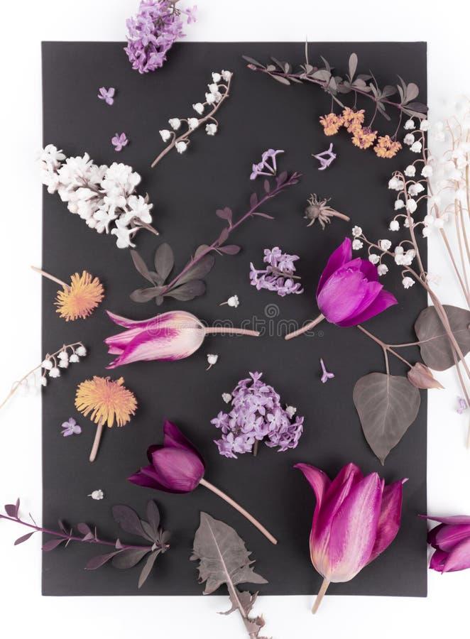 H?rlig bukett av blommor i den isolerade vasen royaltyfria bilder